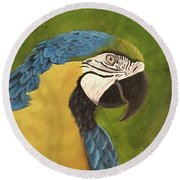 Blue And Gold Mccaw Round Beach Towel