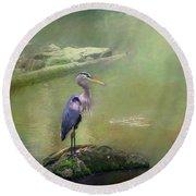 Blue Heron Isolated Round Beach Towel