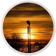 Blue Heron Sunrise Round Beach Towel