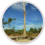 Blue Skies And Broken Branches Round Beach Towel