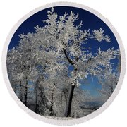 Blue Skies In Winter Round Beach Towel