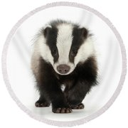 Bodger The Badger Round Beach Towel