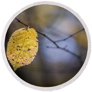 Bright Fall Leaf 1 Round Beach Towel