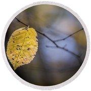 Bright Fall Leaf 1 Round Beach Towel