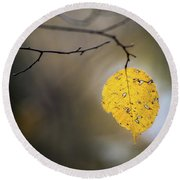 Round Beach Towel featuring the photograph Bright Fall Leaf 6 by Michael Arend