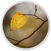 Round Beach Towel featuring the photograph Bright Fall Leaf 8 by Michael Arend
