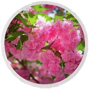 Bright Pink Blossoms Round Beach Towel