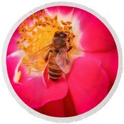 Brilliant Bee Round Beach Towel