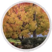 Brilliant Fall Color Tree Yellows Oranges Seasons  Round Beach Towel