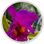 Brilliant Orchid Round Beach Towel