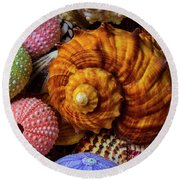 Brown Sea Snail Shell And Urchins Round Beach Towel