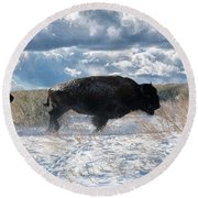 Round Beach Towel featuring the photograph Buffalo Charge.  Bison Running, Ground Shaking When They Trampled Through Arsenal Wildlife Refuge by OLena Art Brand