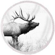 Bull Elk In Rut Round Beach Towel