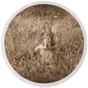 Bunny Sitting Round Beach Towel