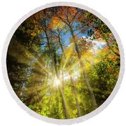 Burst Of Fall Colors Round Beach Towel