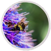 Busy Bee 2 Round Beach Towel