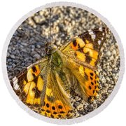 Butterfly Beauty  Round Beach Towel