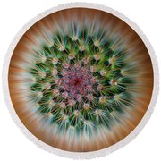 Cactus Cooler Round Beach Towel