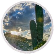 Cactus Portrait  Round Beach Towel