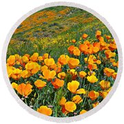 California Golden Poppies And Goldfields Round Beach Towel