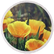 Californian Poppies In The Patagonia Round Beach Towel