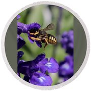 Carder Bee On Salvia Round Beach Towel