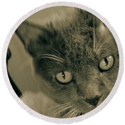 Cat Boticas Portrait 9 Round Beach Towel