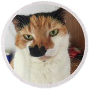 Cat Lovers Bella Round Beach Towel