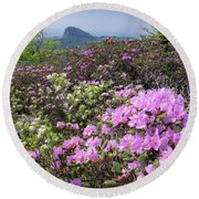 Catawba Rhododendron Table Rock  Round Beach Towel