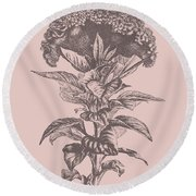 Celosia Blush Pink Flower Round Beach Towel