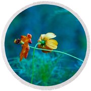 Round Beach Towel featuring the photograph Chance Meeting by Rosanne Licciardi