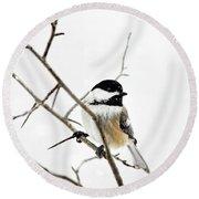 Charming Winter Chickadee Round Beach Towel