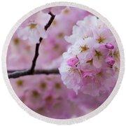 Cherry Blossom 8624 Round Beach Towel