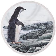 Round Beach Towel featuring the painting Chinstrap Penguin On A Rock By Alan M Hunt by Alan M Hunt
