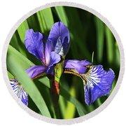 Chorley. Picnic In The Park. Walled Garden Iris. Round Beach Towel