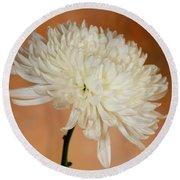 Chrysanthemum On Canvas Round Beach Towel
