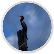 Cinematic Looking Anhinga Round Beach Towel