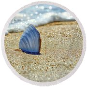Round Beach Towel featuring the photograph Clamshell On The Beach At Assateague Island by Bill Swartwout Fine Art Photography
