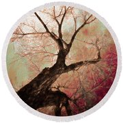 Round Beach Towel featuring the photograph Climbing Red Fiery by James BO Insogna