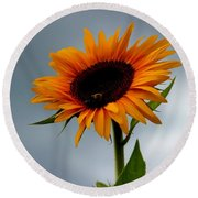 Round Beach Towel featuring the photograph Cloudy Sunflower by Candice Trimble