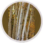Colorado Aspens Round Beach Towel