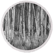Round Beach Towel featuring the photograph Colorado Autumn Wonder Panorama In Black And White  by OLena Art Brand
