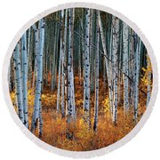 Colorado Autumn Wonder Panorama Round Beach Towel