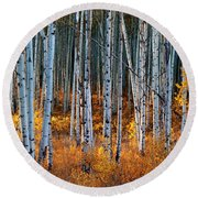 Round Beach Towel featuring the digital art Colorado Autumn Wonder Panorama by OLena Art Brand