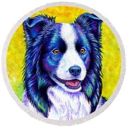Colorful Border Collie Dog Round Beach Towel