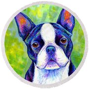 Colorful Boston Terrier Dog Round Beach Towel