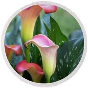 Colorful Spring Flowers Round Beach Towel
