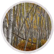 Round Beach Towel featuring the photograph Colorful Stick Forest by James BO Insogna