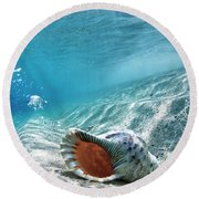 Conch Shell Bubbles Round Beach Towel