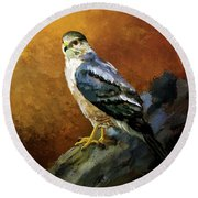 Cooper's Hawk Round Beach Towel